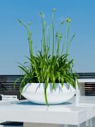 Fiberstone Glossy white tara S 40x16 cm
