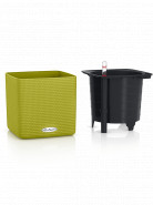 Lechuza Cube Color (Trend) All-in-One set limetkova 14x14x14 cm