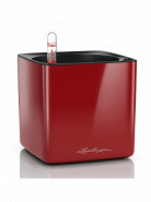 Lechuza Cube Glossy 14 All inclusive set scarlet red high-gloss 14x14x14 cm