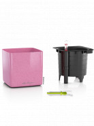 Lechuza Cube Glossy 14 All inclusive set sweet candy high gloss glitter 14x14x14cm
