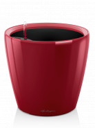 Classico LS 43/40 scarlet red komplet