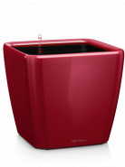 Quadro LS 21/20 all inclusive set scarlet red