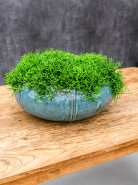 Moda Bowl Turquoise 55x22 cm