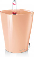 Deltini mini 10/13 pastel apricot high-gloss - DOPREDAJ