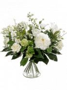 Bouquet white dream 20 Stems 50x60