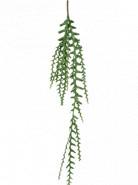 Epiphyllum vine spray green 125x15 cm