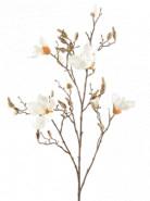 Magnolia Cream branche v. 105cm