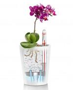 Lechuza Deltini mini owl cardomom green 10x13 cm - DOPREDAJ