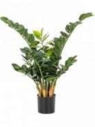 Umelá rastlina Zamioculcas zamiifolia 66 cm