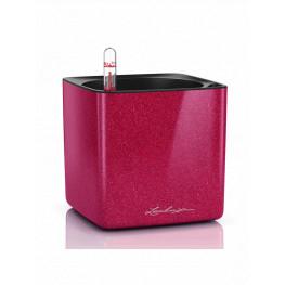 Lechuza Cube Glossy 14 All inclusive set cherry pie high gloss glitter 14x14x14cm