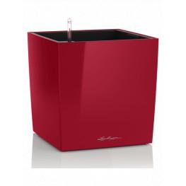 Lechuza Cube Premium All inclusive set scarlet red 30x30x30 cm