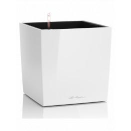 Lechuza Cube Premium All inclusive set wthite high-gloss 30x30x30cm