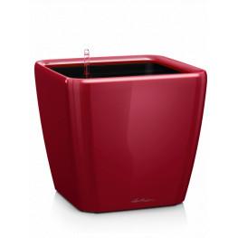 Quadro LS 50/47 all inclusive set scarled red