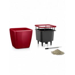 Quadro LS 43/40 all inclusive set scarled red