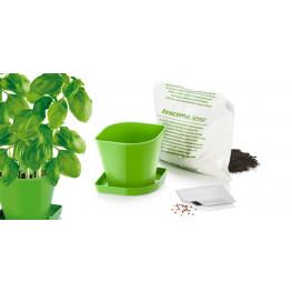 Tescoma súprava na pestovanie bylinek SENSE, bazalka
