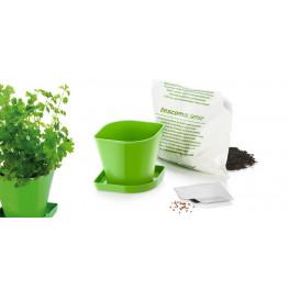 Tescoma súprava na pestovanie byliniek SENSE, koriander