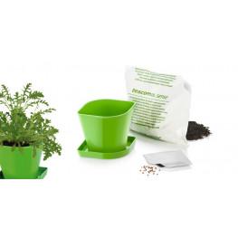 Tescoma súprava na pestovanie byliniek SENSE, rukola