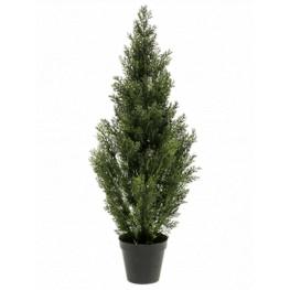 Cedar tree (Ceder) outdoor UV 25x90 cm