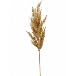 Grass pampas Beige 115 cm