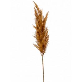 Grass pampas Branch orange 92 cm
