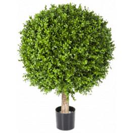 Boxwood ball 40/55 cm