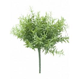 Rosematy bush 22x18 cm