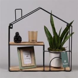 Aranžmán - rastlína v kvetináči, foto rámik a sviečka v domčeku a 36x40 cm