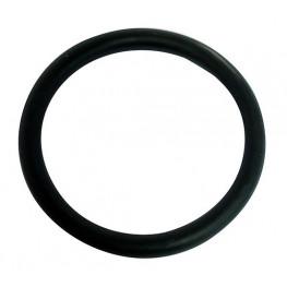 ASTORE - GUA.1000N.025 Plast O-krúžok 25 NBR 24x4,0