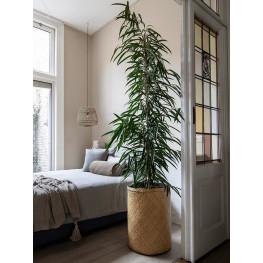 Kvetináč Bohemian Yara L Seagrass 45x57 cm
