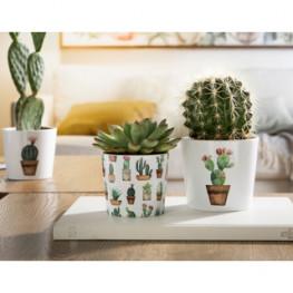 Kvetináč Kaktus Garden 7x6 cm