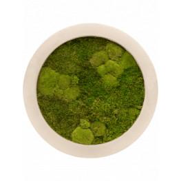 Moss painting Natural 30% ball, 70% plattmoss 40x5 cm (mach)