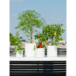 Kvetináč Fiberstone glossy white puk M lesklá biela 20/20 cm