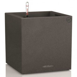 Lechuza Cube LS Color (Trend) All-in-One set slate (structure) 35x35x33