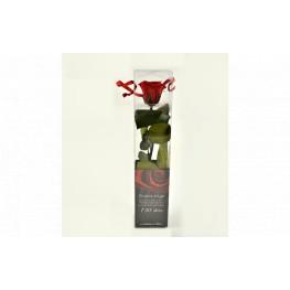 Dračeková ruža (stabilizovaná) červená 27  cm