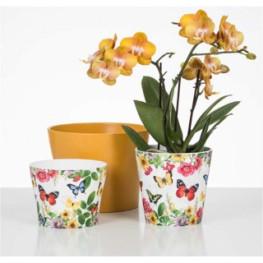 Kvetináč Paradise na orchideu 13x11cm