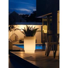 Pure® Grade Smart LED Light Transparent 47x66 cm