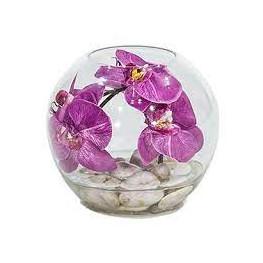 Orchidea v skle 20x20 cm