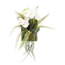 Phalaenopsis fern decoration M 35x18 cm
