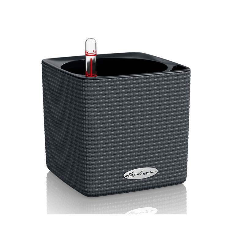 Lechuza Cube Color (Trend) All-in-One set seda 14x14x14 cm