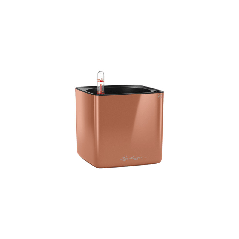 Lechuza Cube Glossy 14 All inclusive set spicy copper highgloss 14x14x14 cm