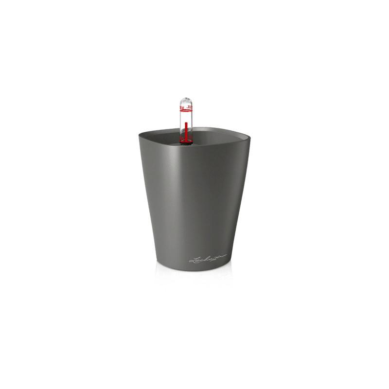 Lechuza Deltini Mini All inclusive set charcoal metallic 10x13 cm