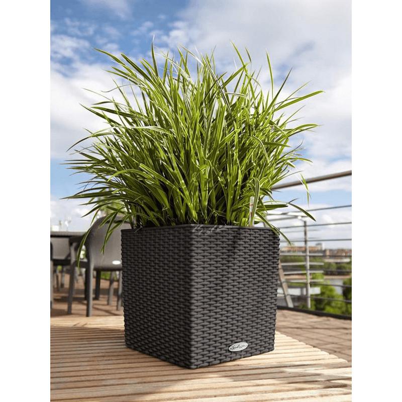 Lechuza Trend Cube Cottage All inclusive set granite 30x30x33