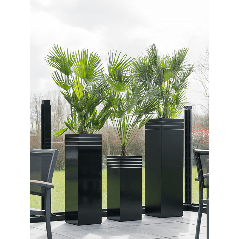 Line-Up Square Matt Black (s vnutrom) 30x30x75 cm