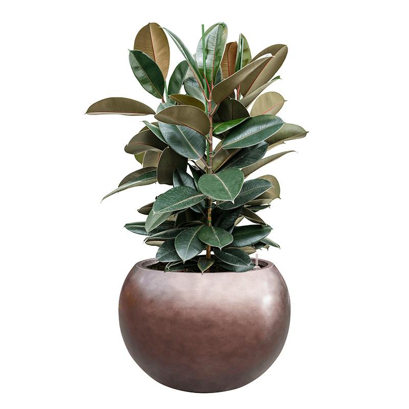 Metallic Silver leaf Globe matt coffee (s vnutrom) 60x43 cm