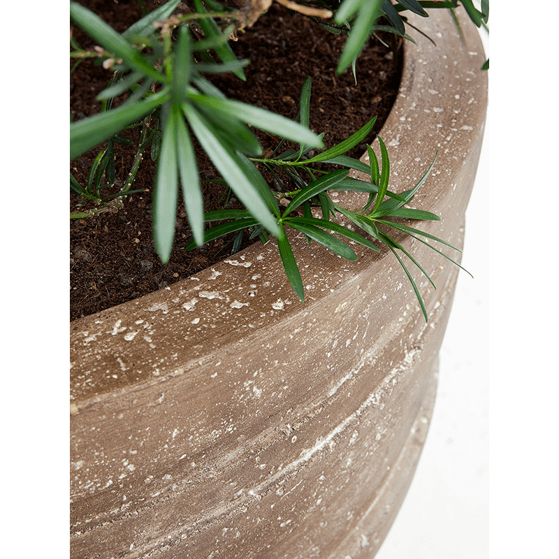 Polystone Coated Junar Couple Rock 70x56 cm