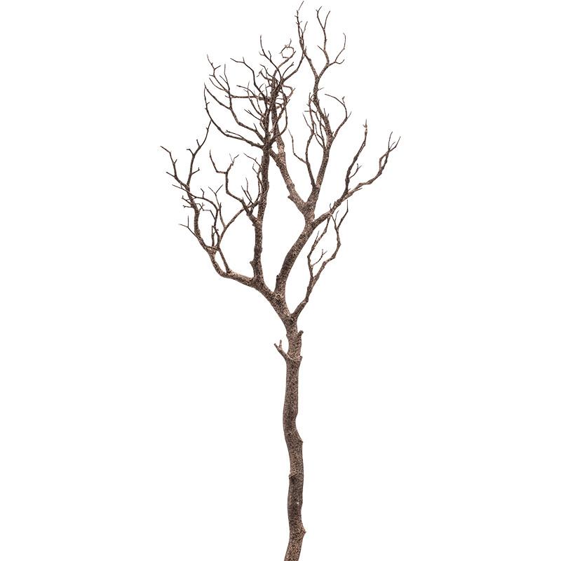 Trunk natural Brown 90 cm