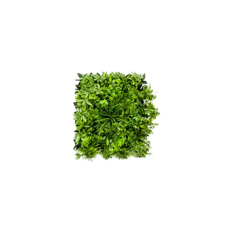 Schefflera Mat (weather resistant) 50x50 cm