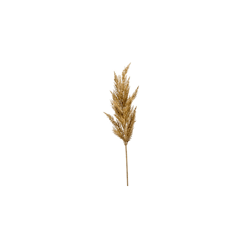 Grass pampas Beige 92 cm