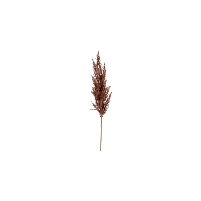 Grass pampas Branch brown 92 cm