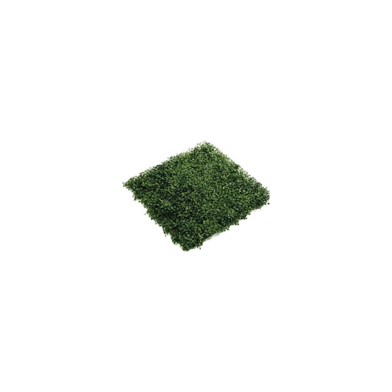 Boxwood Mat green (weather resistant) 50x50 cm